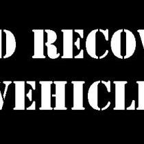 FORD RECOVERY