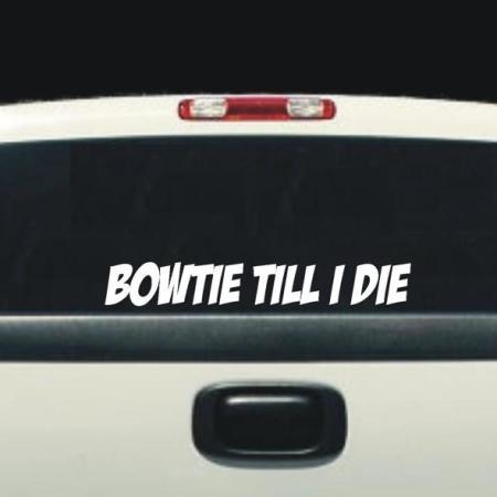 BOWTIE TILL I DIE BACK WINDOW